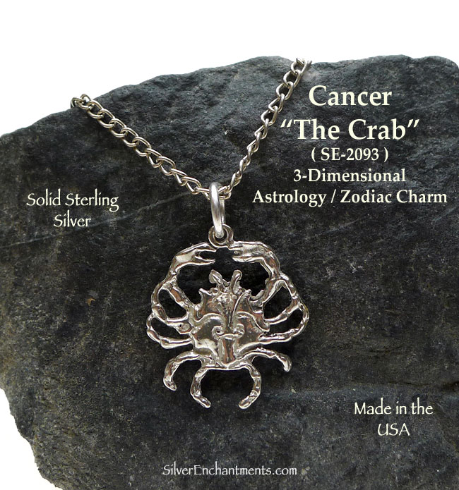 Sterling Silver Cancer Charm Cancer Zodiac Jewelry The Crab