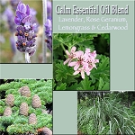 CALM Oil - Essential Oil Aromatherapy Perfume - ALL NATURAL