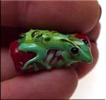 Lampworked Lizard Beads, Glass Gecko Pendant Beads, 1pc
