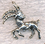 Sterling Silver Capricorn Charm, 3D