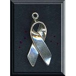 Sterling Silver Awareness Ribbon Charm