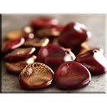 Czech Rose Petal Beads, GOLD OXBLOOD, 14mm Strand