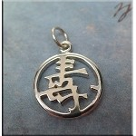Sterling Silver Long Life Symbol Charm