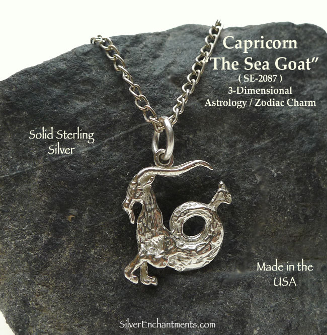 Sterling Silver Capricorn Necklace Capricorn Charm