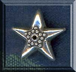 Sterling Silver Ornate Star Beads, 18mm (1)