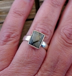 Sterling Silver Spiderweb Jasper Ring Size 8