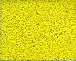 Miyuki Seed Beads, Size 11, Opaque Pearl Lustre Yellow Lustre, Tube
