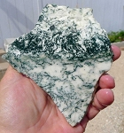 Tree Agate Slab, 124x114x7.3mm