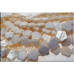 Mother of Pearl Beads, 12mm Star-Flower