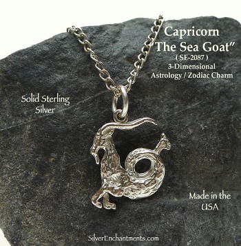 Sterling Silver Capricorn Necklace, Capricorn Charm, Astrology Jewelry, Sea Goat Capricornus