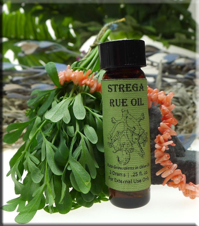 Strega Rue Oil - Organic Rue Infused Oil for Protection, Candle-dressing, Italian Stregheria with Rue Sprig and Protective Coral
